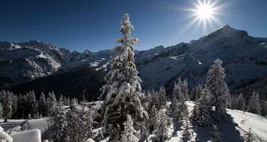 Region Garmisch im Winter